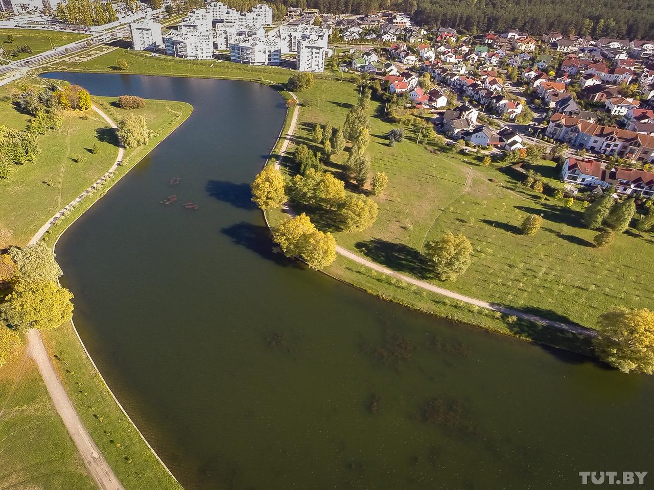 С высоты видно зарастание каналов